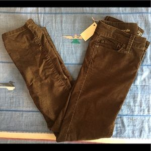 Ann Taylor Coppery Brown Cords